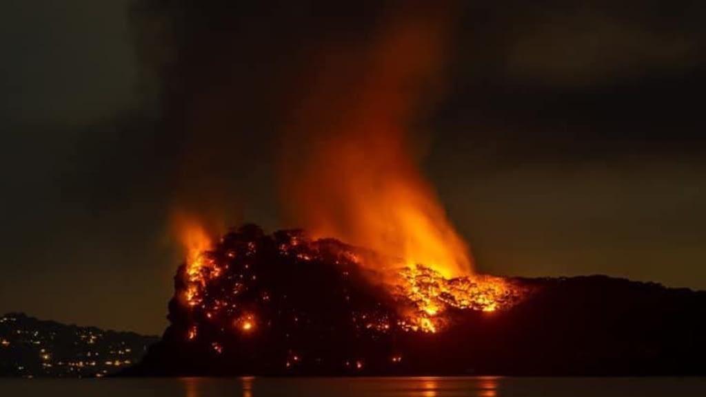 Lion Island fire 2029